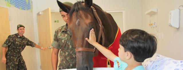 Globo repercute visita especial de cavalo aos pacientes do Hospital da Criança de Brasília